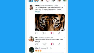 Photo of Twitter rolls out stories fleets in India
