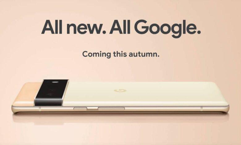 Google Pixel 6, Pixel 6 Pro
